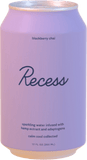 Recess Sparkling Water 12oz. - Greenwich Village Farm