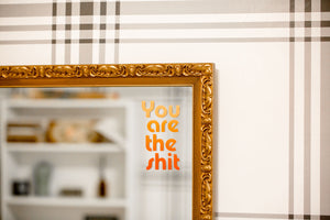 You're the Sh*t Mirror Decal