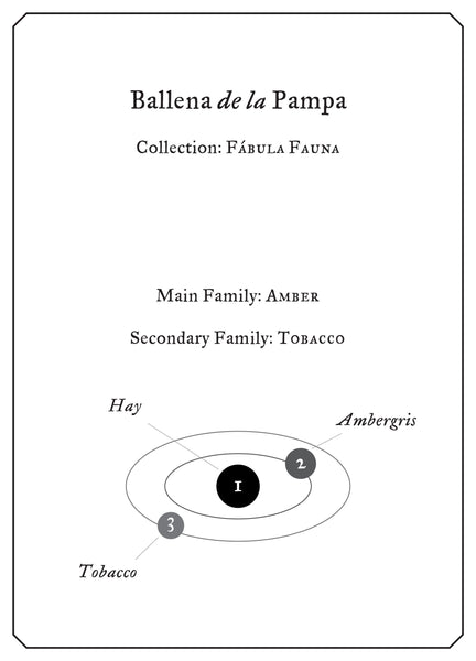 Ballena de la Pampa - Sample
