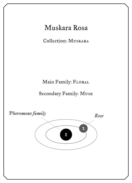 Muskara Rosa - Sample