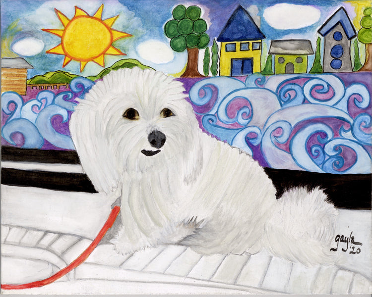 When The Right One Comes Along: Sidney Condit the Coton de Tulear