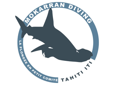 Mokarran Diving