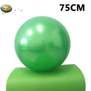 Yoga Balls Pilates Fitness Gym Balance Fitball Exercise Workout Ball 45/55/65/75/85CM with pump