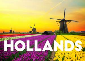 Hit Singles | Hollands