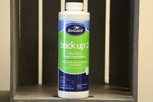 BioGuard Back Up 2 Algicide