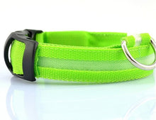 Load image into Gallery viewer, LED Lights  Night Safety Dog Collars