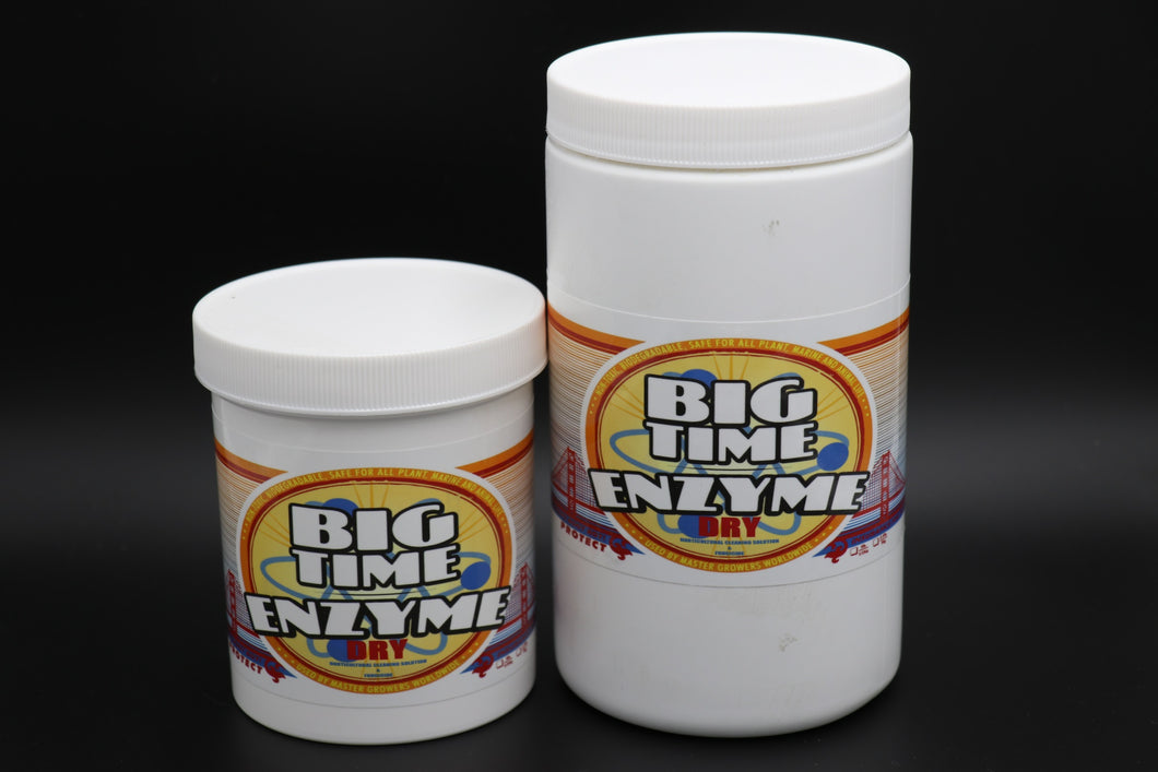 Big Time Enzyme Dry - DryZyme