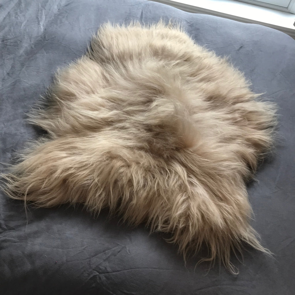 Honey Gold Icelandic Longhair Sheepskin 90-100cm Med - Wildash London