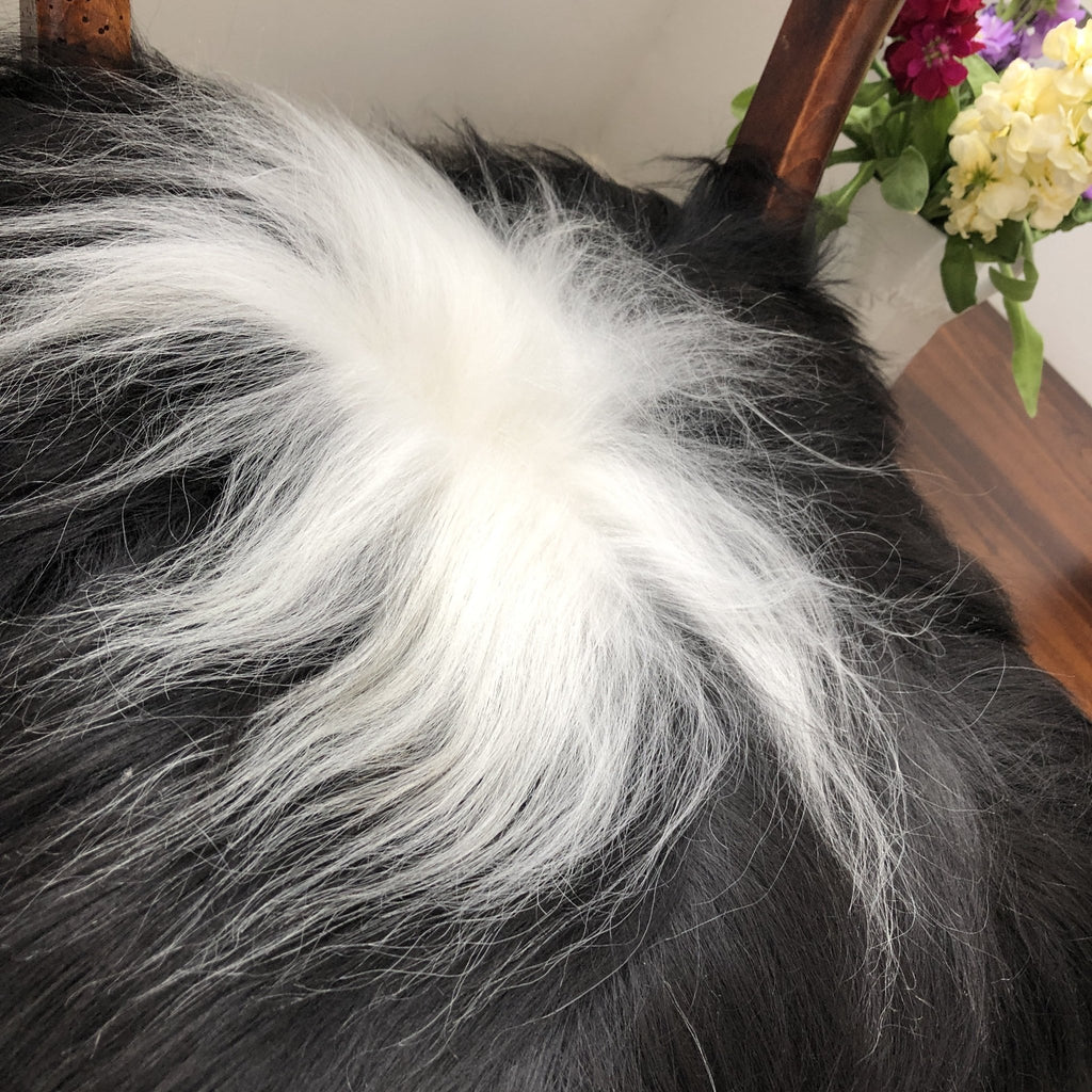 Icelandic Sheepskin Square Seat Cover 37cm Black & White - Wildash London