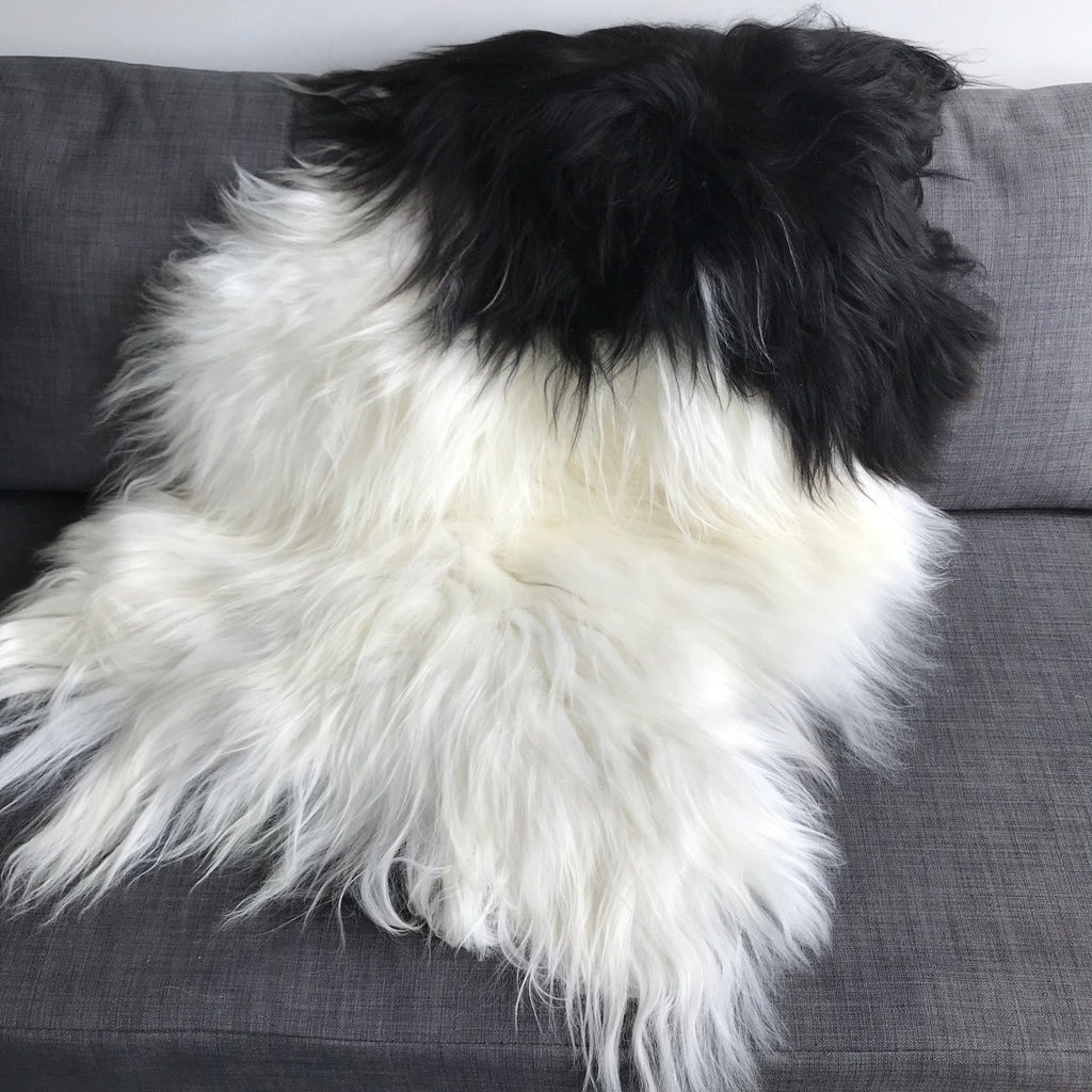 Large Spotted Yin & Yang Icelandic Sheepskin Throw White with Black Spotted Sheep Skin Rug Eco Fleece 100% Natural Undyed Hygge UN-2004 - Wildash London