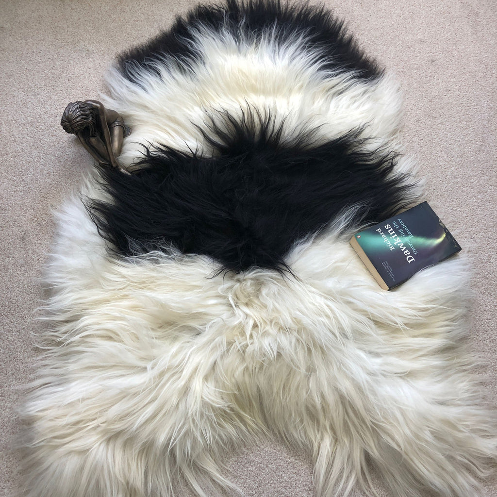 Yin & Yang Icelandic Sheepskin Throw White with Black Spots Rug Eco Fleece 100% Natural Undyed Hygge 1604ILSPL-13 - Wildash London
