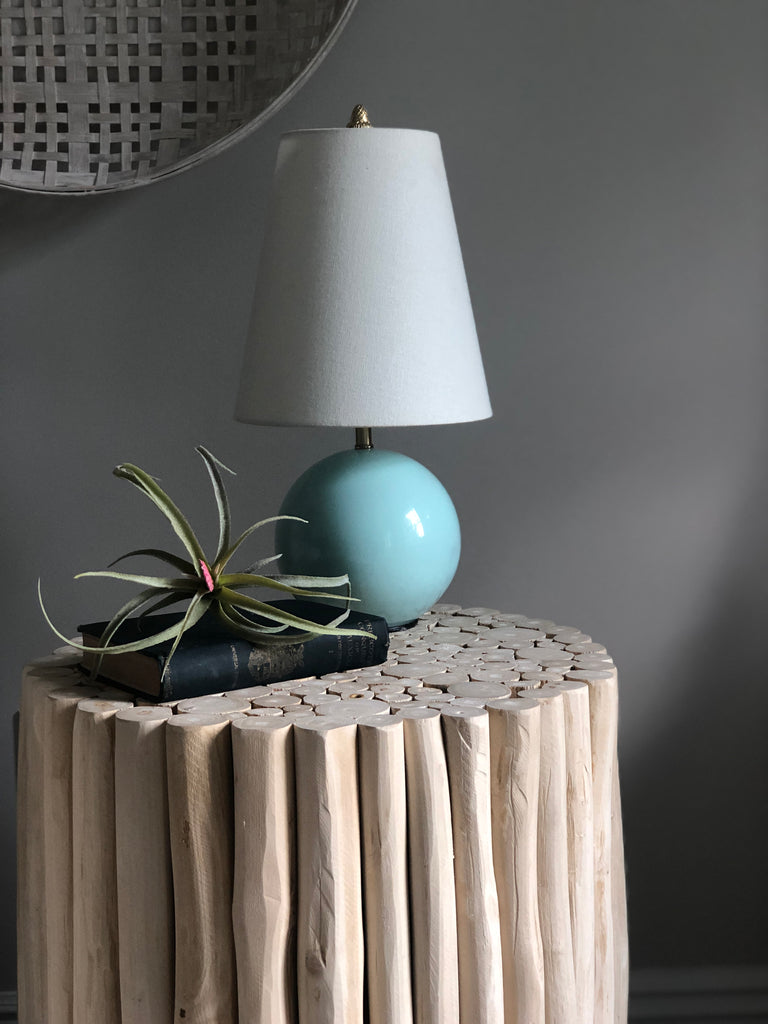 accent lighting textured end table air plant