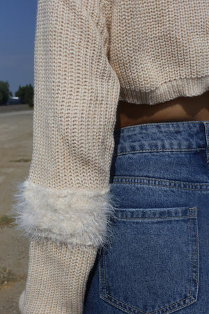 Aubrielle Fuzzy Knit Crop Sweater