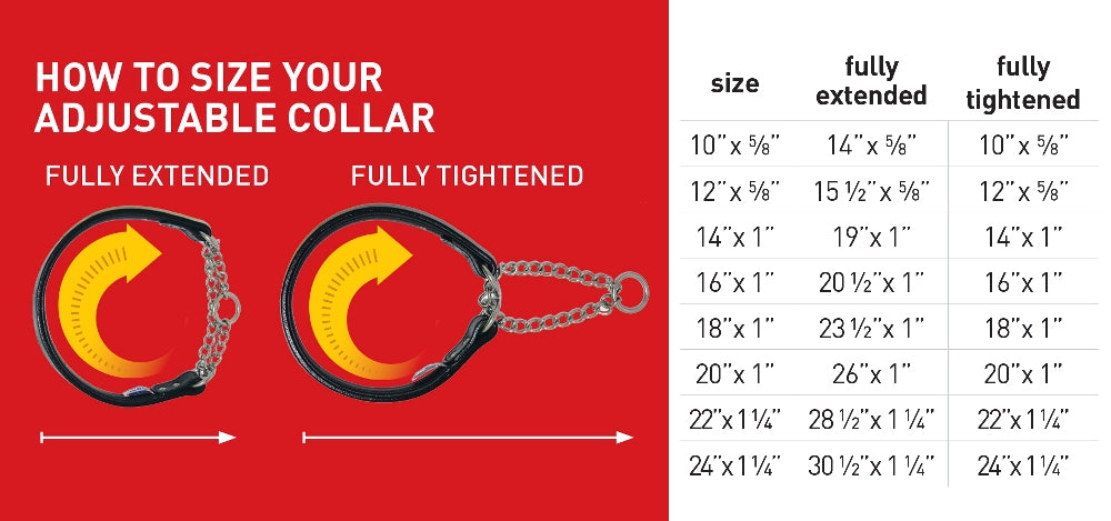 Size Your Adjustable collar