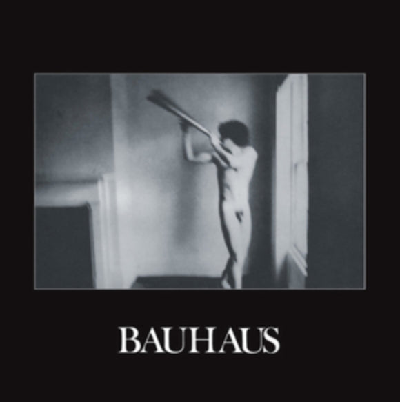 Bauhaus<Br>In The Flat Field