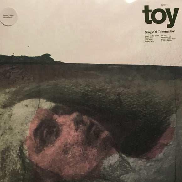 Toy<Br>Songs Of Consumption