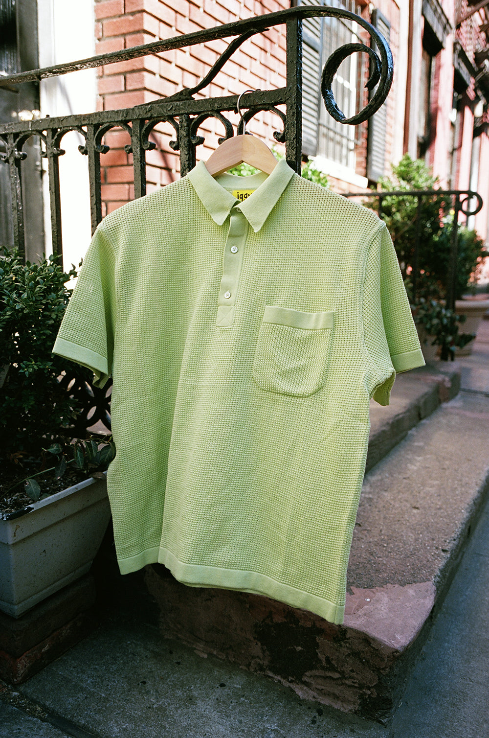 CHARTREUSE KNIT POLO