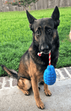 USA-K9 Grenade Blue Durable Rubber Chew Toy