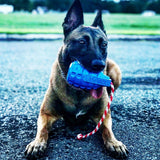 USA-K9 GRENADE REWARD TOY - BLUE