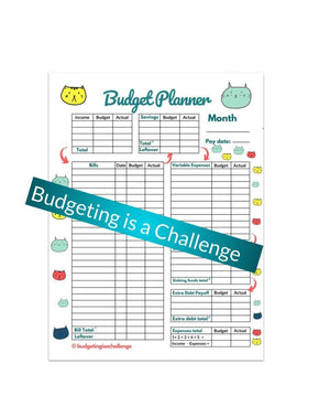Save more and hit your financial goals with my cute printable budget planner sheet!