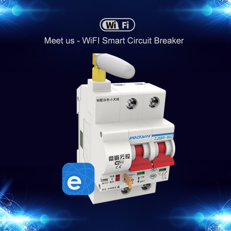 Smart Home WiFi Switch Light 2P 32A/80A/100A  Circuit Breaker IoT Switch App Ewelink Remote Control Work With Alexa Google Home