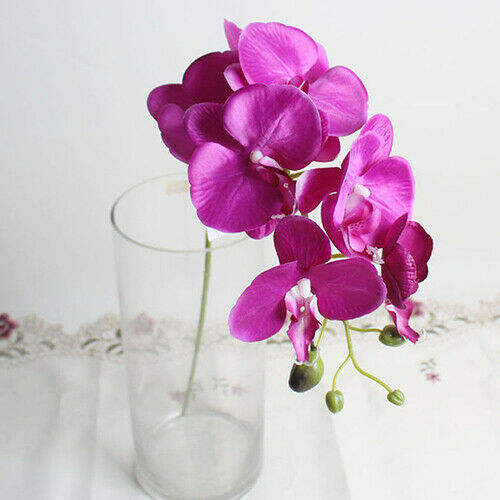 Crteative Butterfly Orchid Flower Wedding Decor Bouquet Phalaenopsis Accessory N