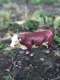 Little Buster Cow