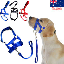 Load image into Gallery viewer, Halti Training Head Dog Collar