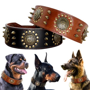 Leather Spiked Studded Pitbull Collar
