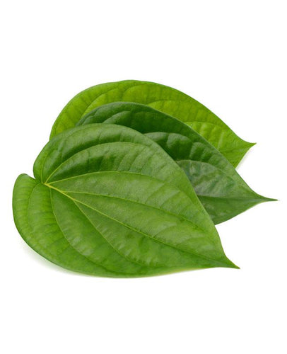 Betel Leaves (Vetrilai)