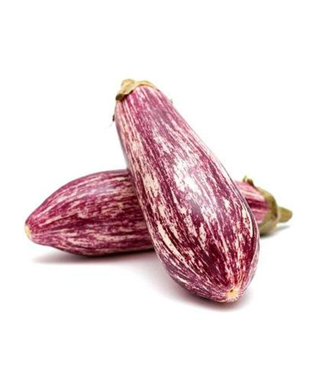 Aubergine Stripy Small