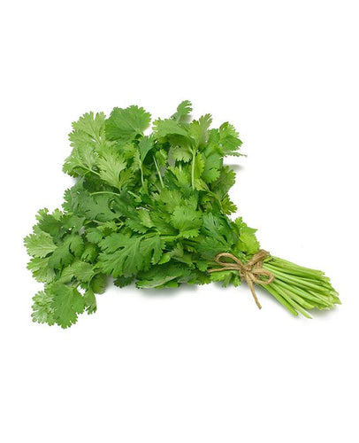 Coriander (Dhaniya) Leaves