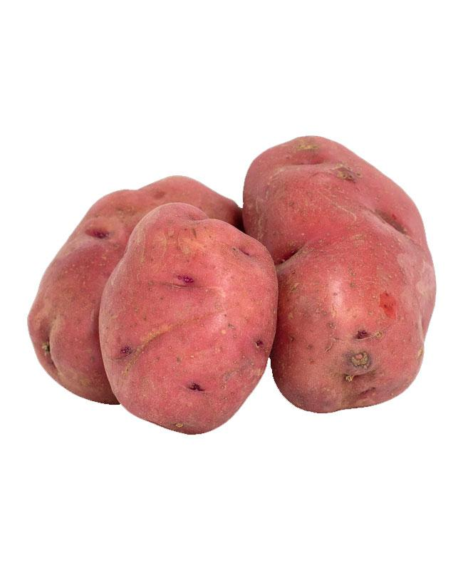 Sweet Red Potato