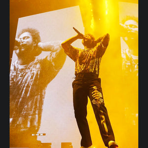 POST MALONE - SKELTETON SWORD PANTS - RUNAWAY TOUR