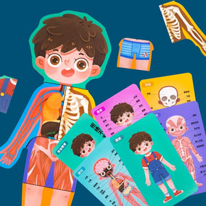 Children's Body Structure Puzzle Skeletal   Organs