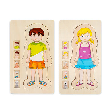 Multi-Layer Wooden Human Body Puzzles Structure Cognition