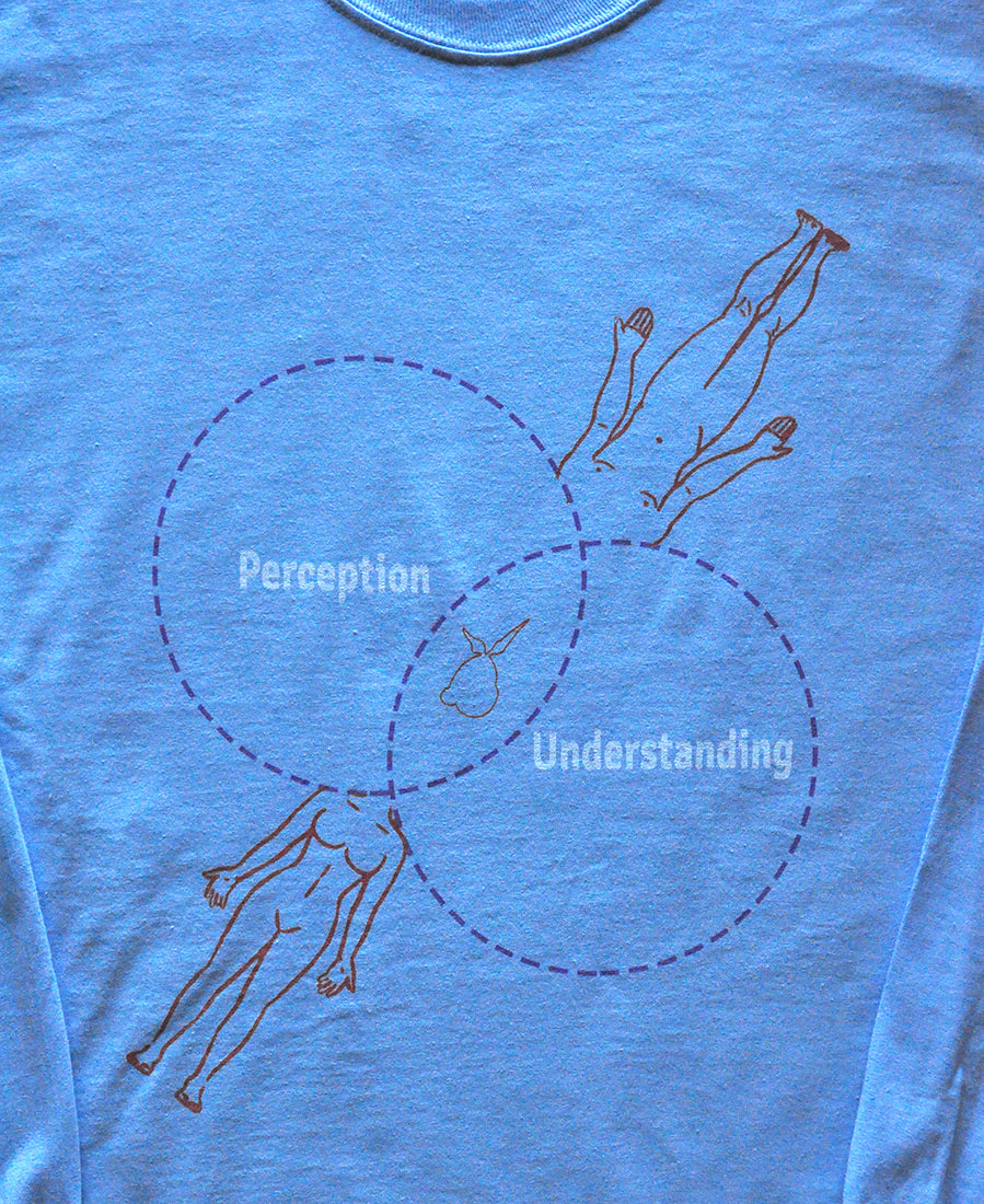 Perception & Understanding L/S