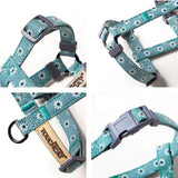 Cat Harness with Leash