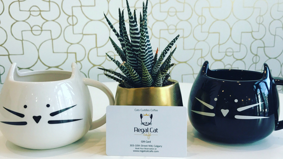 Gift Card for Regal Cat Cafe