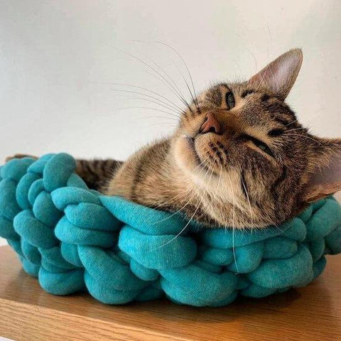 Knitted Cat Bed (Tube Yarn)