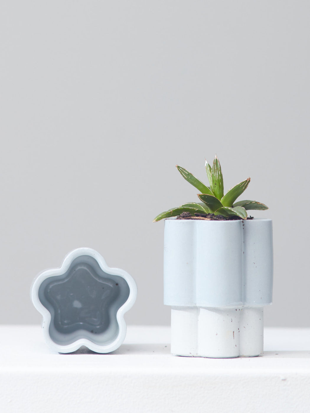 HIGH NOON ARTIST EDITION PLANTER - BABY, Small 3 Inch