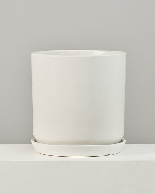 CALIFORNIA PLANTER COLLECTION: MATTE WHITE TWO PIECE CERAMIC Large 15 Inch