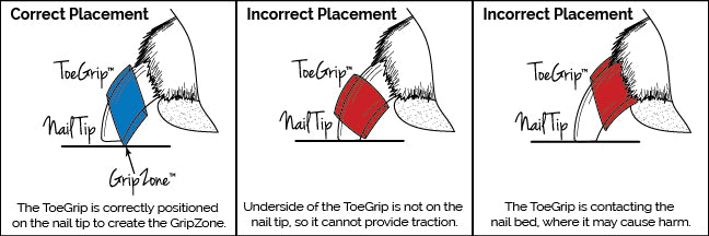 ToeGrips Correct Placement Diagram