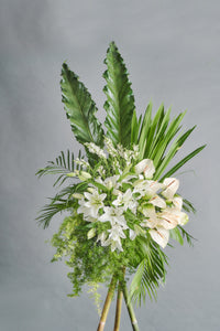 Eternity (Bamboo) - Spruce Florals & Events