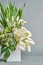 Load image into Gallery viewer, Salva - Spruce Florals & Events