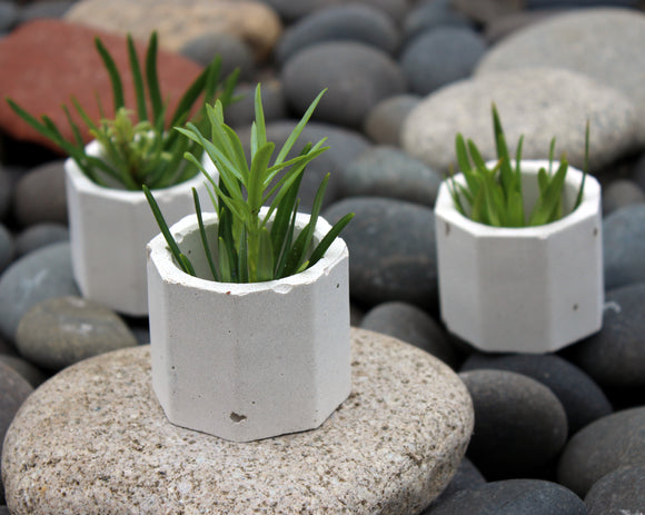 Mini Concrete Planter Set of 3, Octagonal