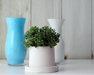 Small Round Concrete Planter with Base