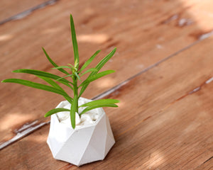 Mini Octagonal Diamond Cut Planter