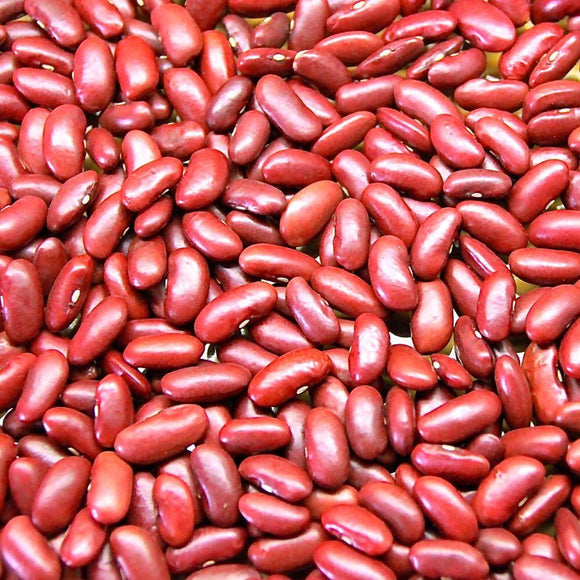 Organic Red Kidney Beans - 100g - SW Coast Refills