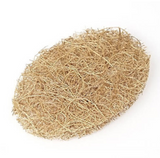 Coconut Coir Hair and Body Scrub Pad - Safix - SW Coast Refills